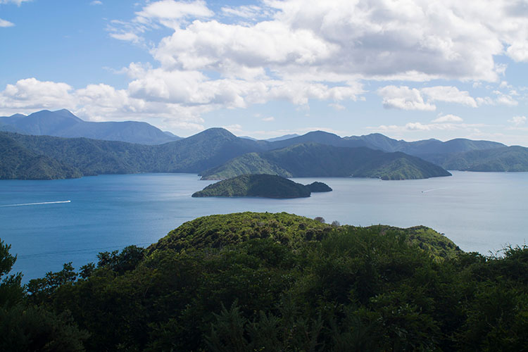 The final viewpoint on the Snout Track, Picton, New Zealand