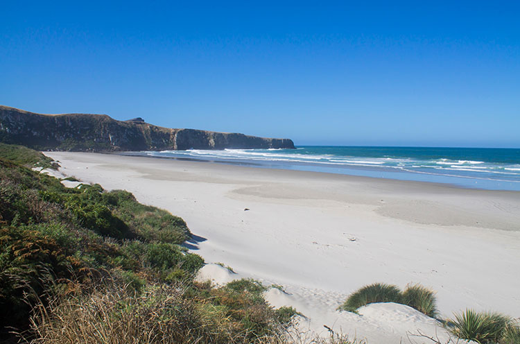Victory Beach, Dunedin, New Zealand
