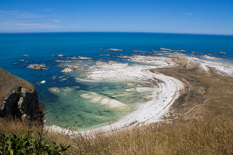 Whalers Bay, Kaikoura Peninsula Walkway, New Zealand