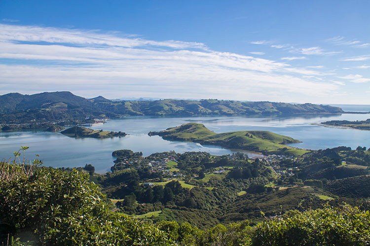 Stunning view of Otago Harbour from the Harbour Cone Track, Dunedin, New Zealand