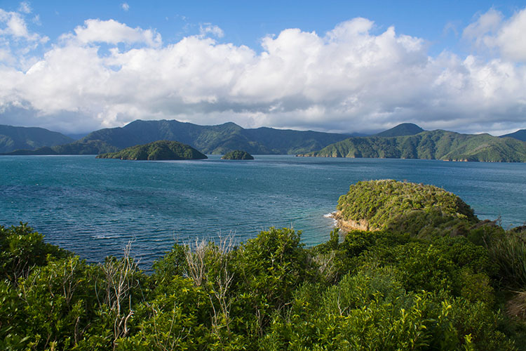 Stunning view from Karaka Point, Picton, New Zealand
