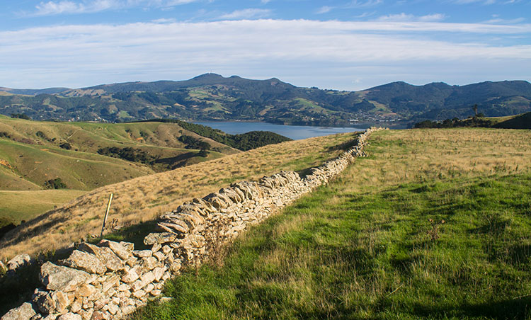A stone wall on the Harbour Cone Track, Dunedin, New Zealand