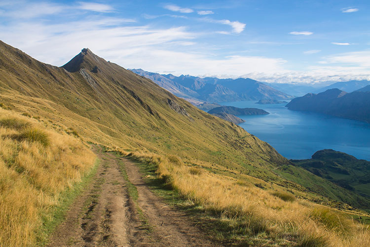 Hiking the Roys Peak track, Wanaka, New Zealand