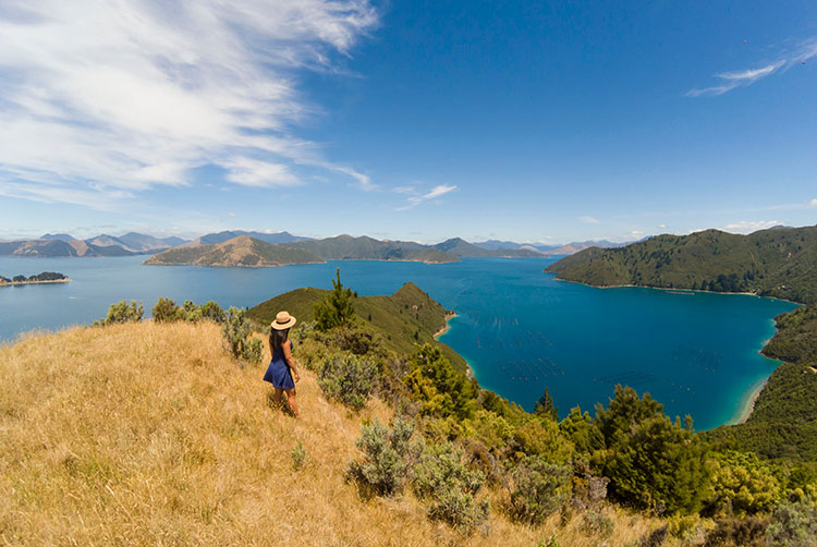 Beautiful view above Bulwer -- on the drive to French Pass, Marlborough Sounds, New Zealand