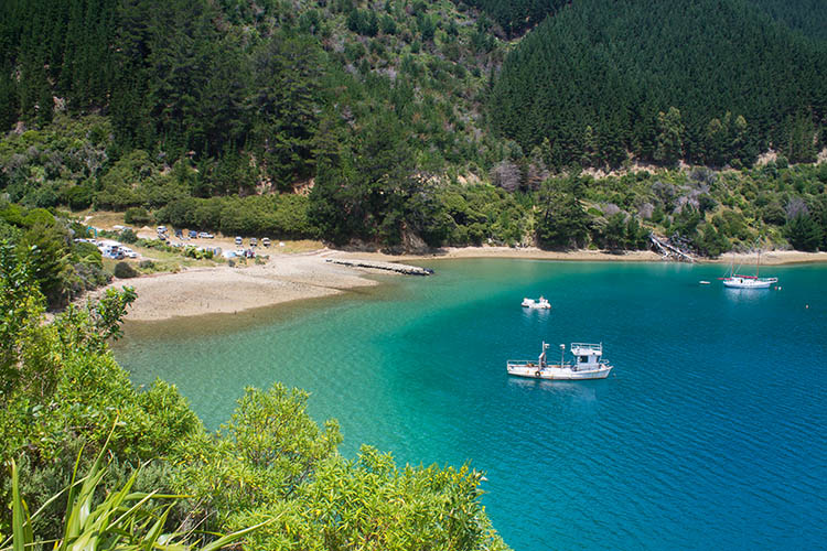 A calm cove on the road to French Pass / Bulwer, Marlborough Sounds, New Zealand
