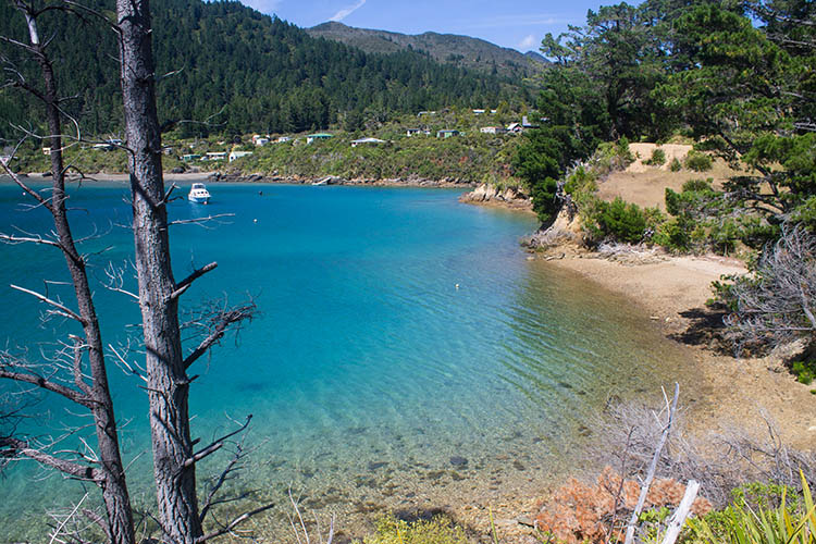 Hiking at Elaine Bay, a good place to stop when driving to French Pass, Marlborough Sounds, New Zealand