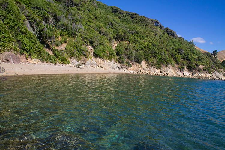French Pass Beach, Marlborough Sounds, New Zealand