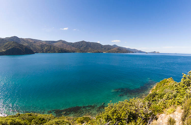 French Pass Lookout, Marlborough Sounds, New Zealand