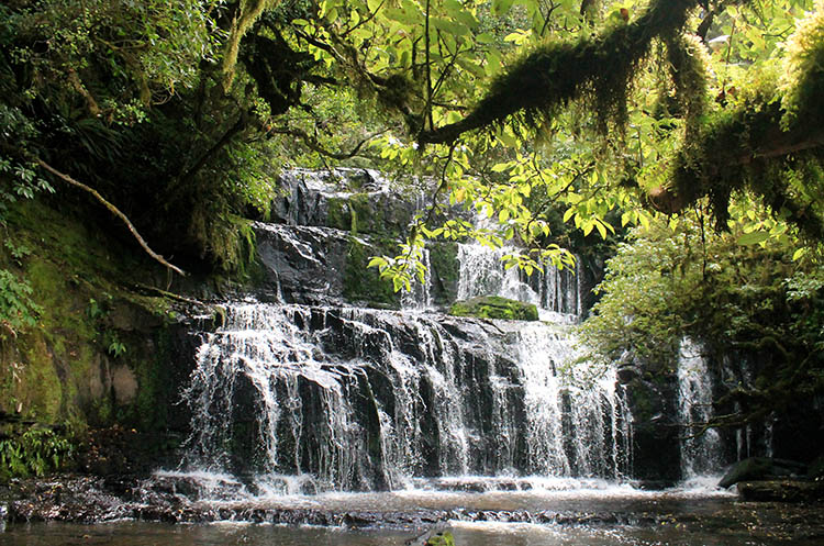 Purakaunui Falls, the Catlins, New Zealand