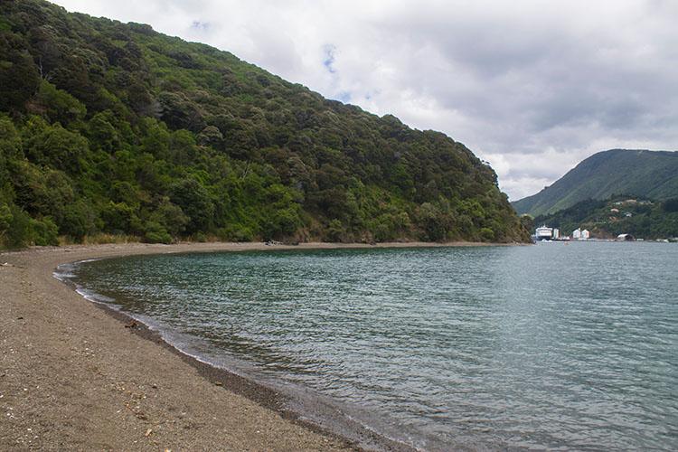 A nice beach near Picton, New Zealand
