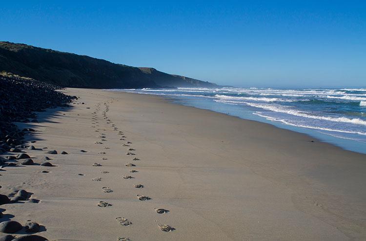 Walking along Boulder Beach, Dunedin, New Zealand