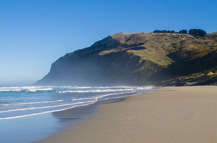 A misty morning at Boulder Beach, Dunedin, New Zealand