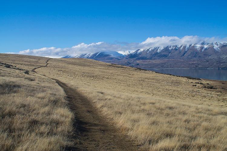 The Peninsula Walkway, Lake Tekapo, New Zealand