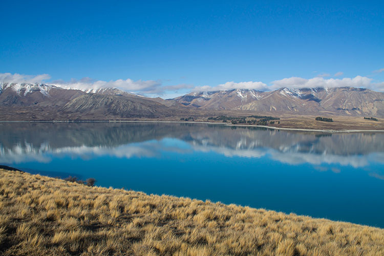 Things to do in Lake Tekapo -- the Peninsula Walkway
