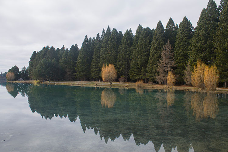 A picnic spot at Lake Ruataniwha, Mackenzie Basin, New Zealand