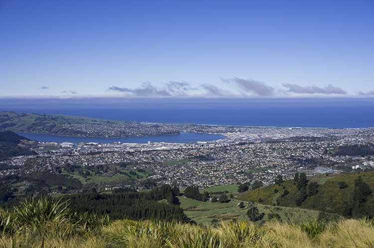 Stunning view of Dunedin from the Pineapple Track, New Zealand