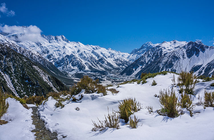 Hiking the Red Tarns Track, Mount Cook National Park
