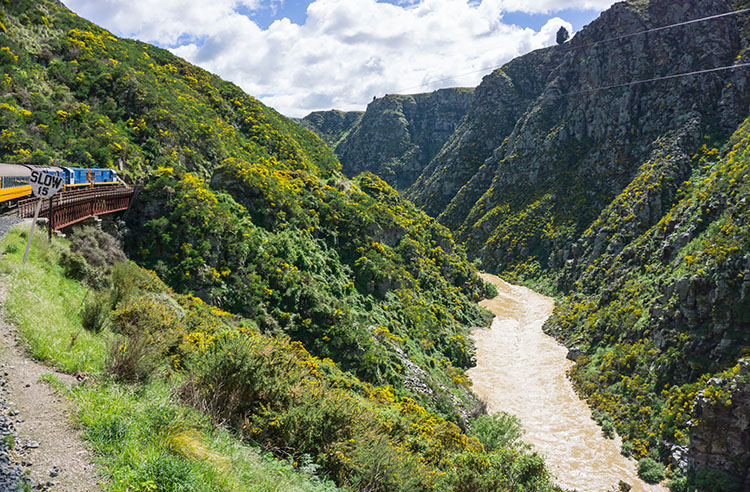 Taieri Gorge Railway -- going over a viaduct