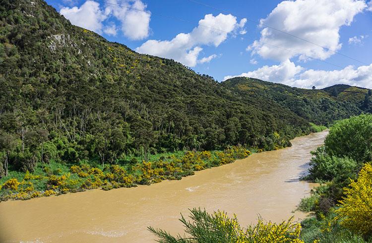 Taieri Gorge Railway -- The Taieri River