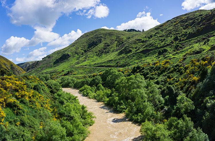 Taieri Gorge Railway -- Emerald green hills