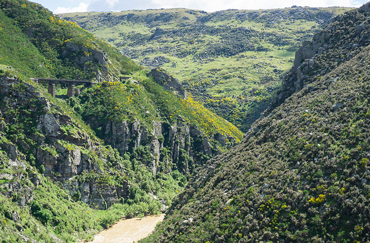 Taieri Gorge Railway -- A viaduct in the distance