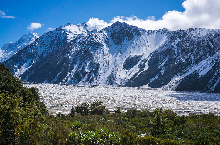 Hiking the Governors Bush Track, Mount Cook National Park