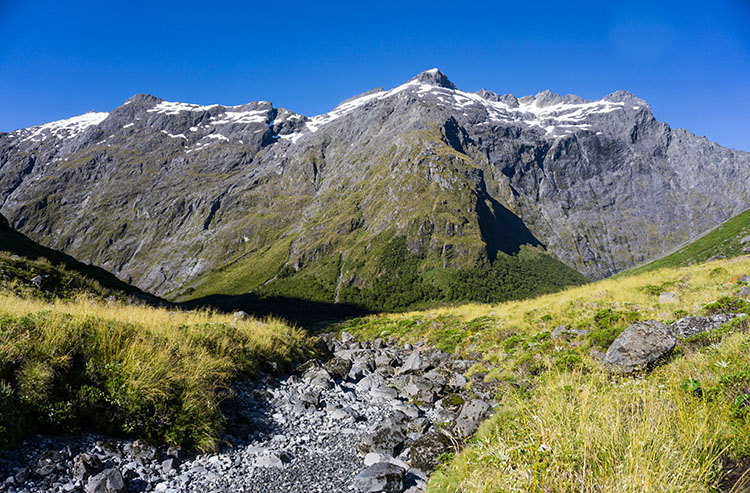 The start of the Gertrude Saddle Track, Fiordland National Park, New Zealand