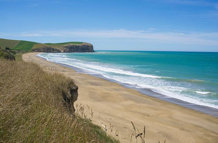 A stunning beach on the drive from Dunedin to Oamaru, New Zealand