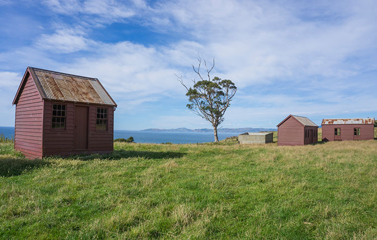 Waikouaiti Beach / The Matanaka Farm Buildings, Coastal Otago