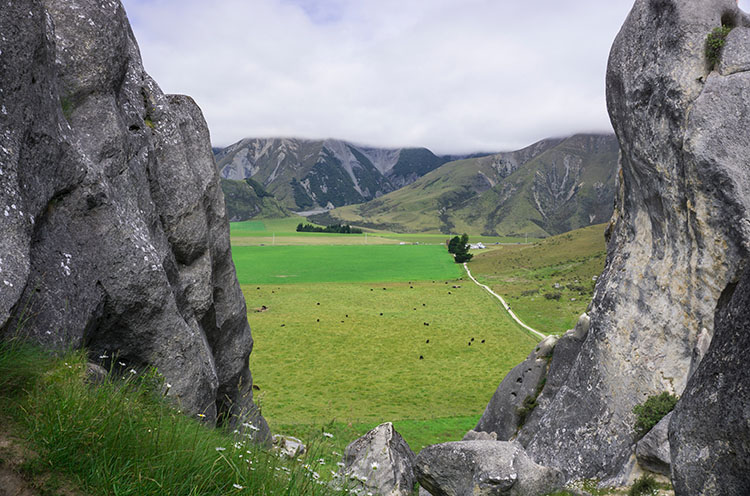 Exploring Castle Hill, Canterbury | See the South Island NZ