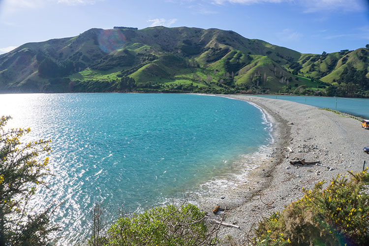 Cable Bay Beach, Nelson, New Zealand