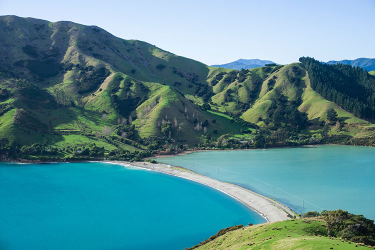 Hiking the Cable Bay Walkway, Nelson, New Zealand