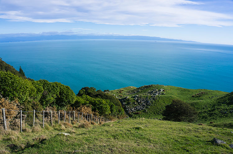 Views from Cable Bay Walkway, New Zealand