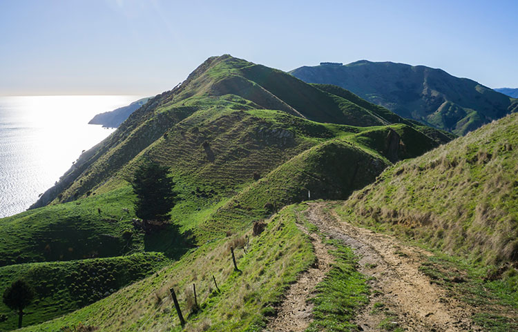 Cable Bay Walkway, Nelson, New Zealand