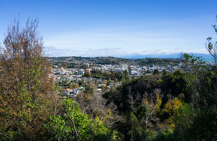 Views of Nelson from the Centre of New Zealand Walk