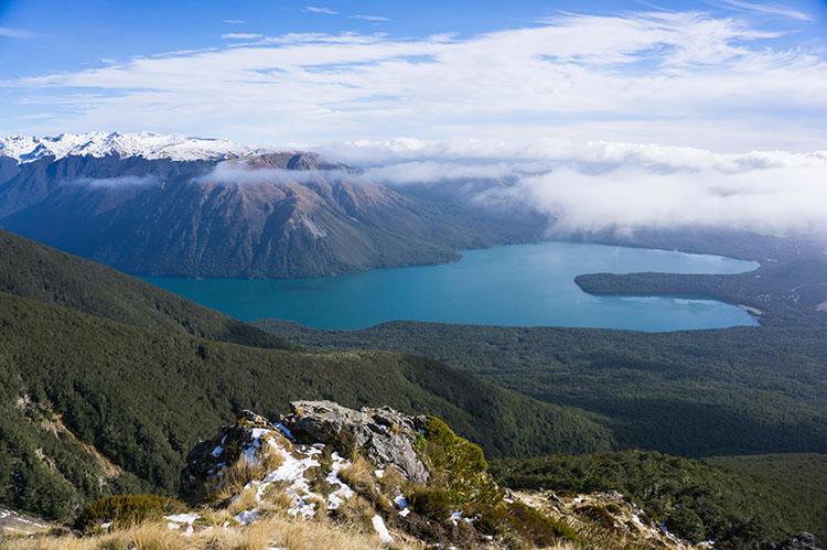 St Arnaud Range Track, Nelson Lakes National Park, New Zealand