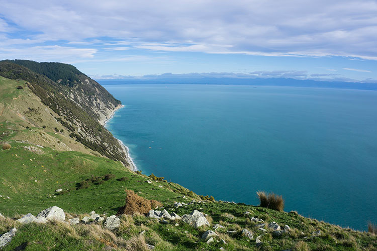Hiking in Nelson, New Zealand