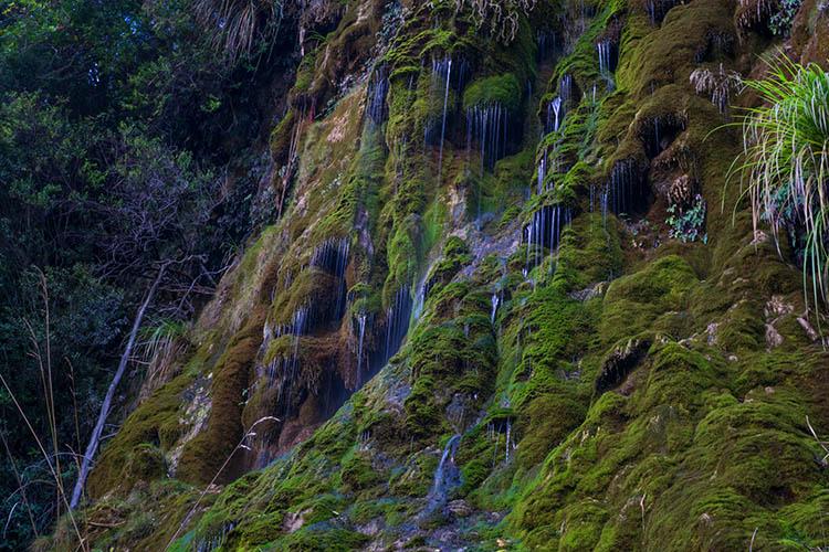 Whispering Falls, Nelson, New Zealand