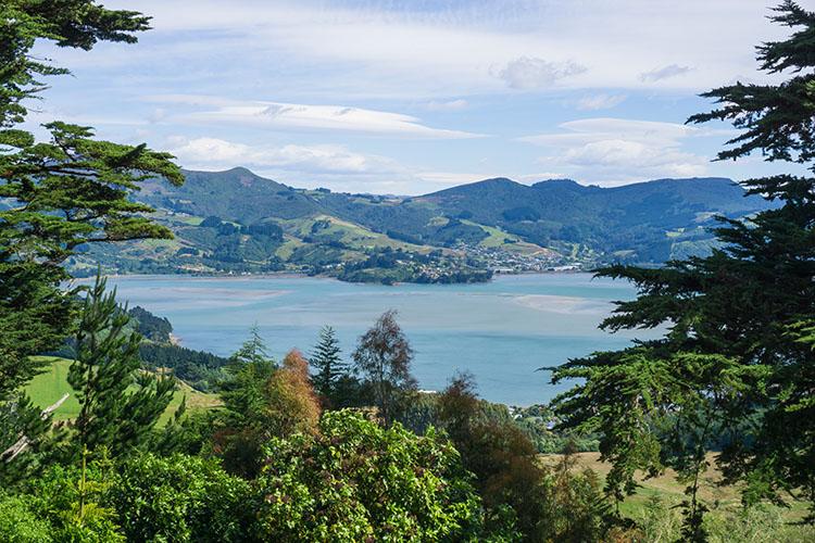 Views from Larnach Castle, Dunedin, New Zealand