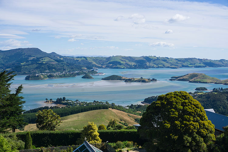 Otago harbour from the tower at Larnach Castle, Dunedin, New Zealand