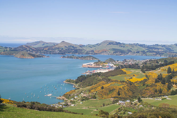 View above Port Chalmers, Dunedin, New Zealand