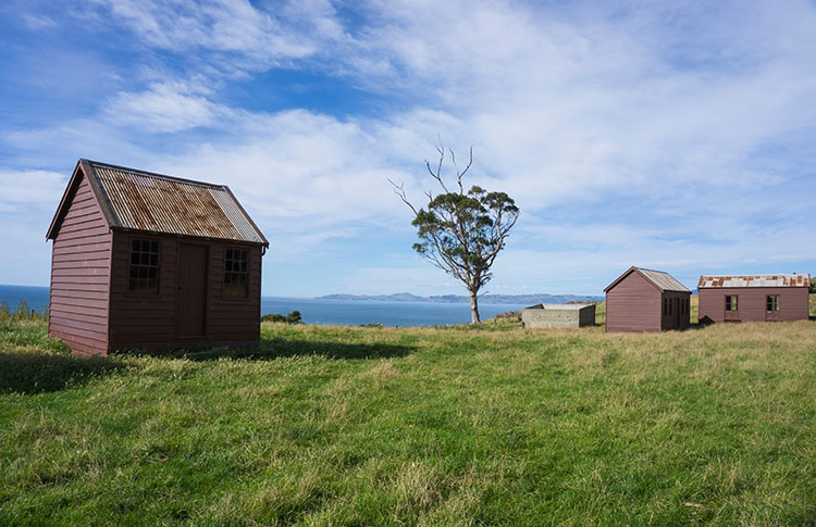 Scenic drive from Dunedin to Oamaru, New Zealand