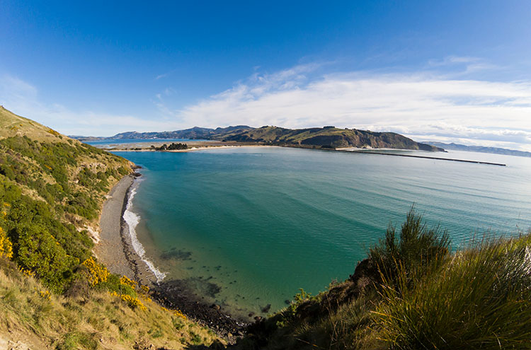 Stunning view at Taiaroa Head, Dunedin, New Zealand