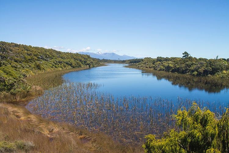 Dune Lake at Ship Creek, West Coast, New Zealand
