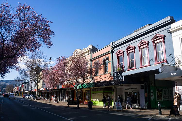 George Street, Dunedin