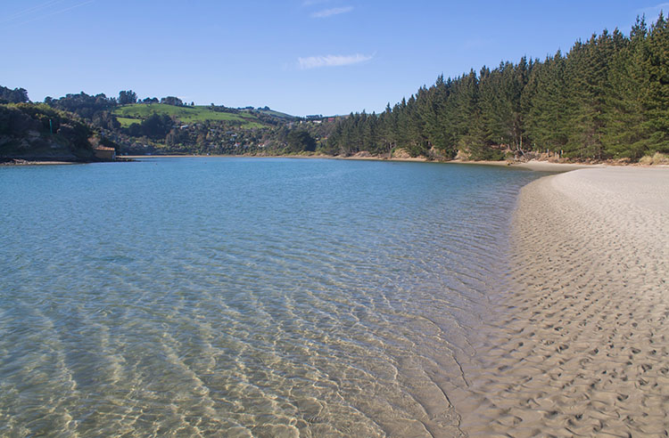Purakaunui Inlet, Dunedin, New Zealand