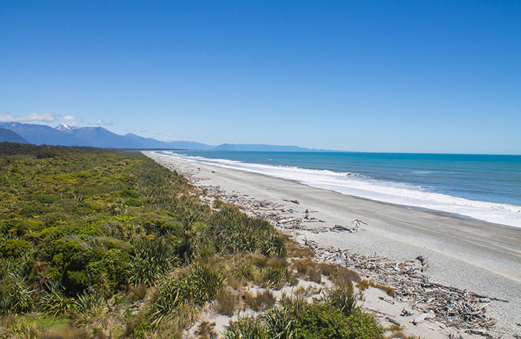 Beach at Ship Creek, Haast, New Zealand