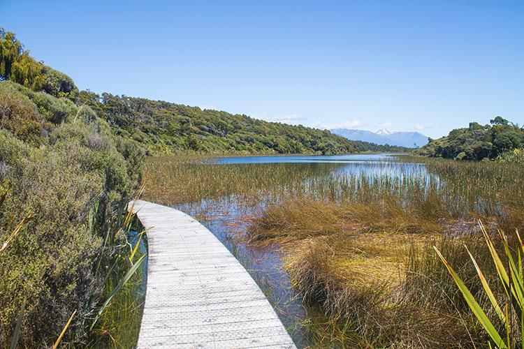 The Dune Lake Walk, West Coast, New Zealand