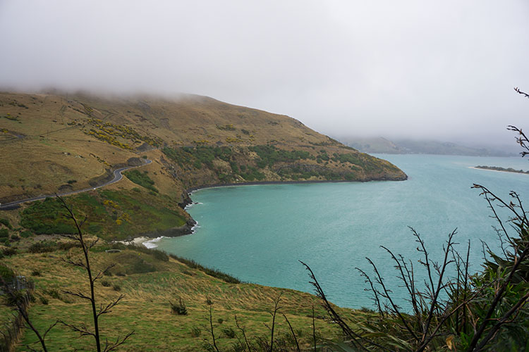 A rainy day at Taiaroa Head, Dunedin, New Zealand