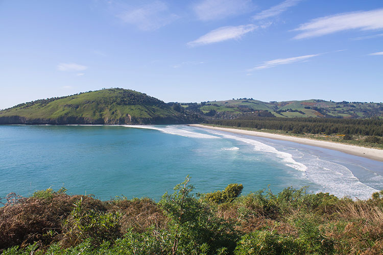 View of Purakaunui Beach from Mapoutahi Pa, Dunedin, New Zealand